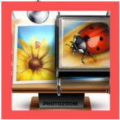 Benvista PhotoZoom Pro 8_Icon