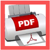 BullZip PDF Printer Expert_Icon