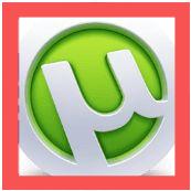 Utorrent Pro_Icon