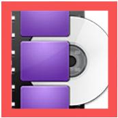WonderFox DVD Ripper Pro 13 _Icon