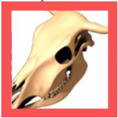 headus UVLayout Pro_Icon